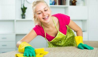 aide ménagère à Albi